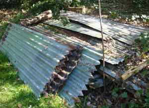 Rusting corrugated iron panels deterred plant thieves